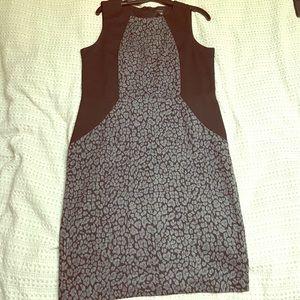 NWT Edgy and Elegant work dress